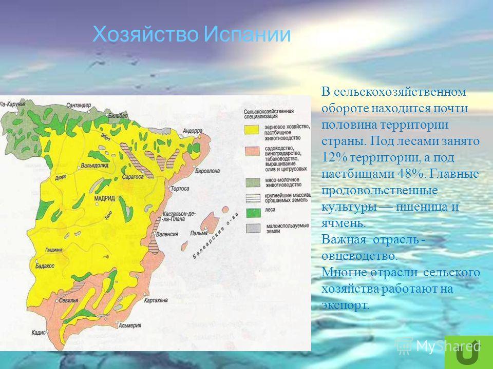 Хозяйство Испании В сельскохозяйственном обороте находится почти половина территории страны. Под лесами занято 12% территории, а под пастбищами 48%. Главные продовольственные культуры пшеница и ячмень. Важная отрасль - овцеводство. Многие отрасли сел