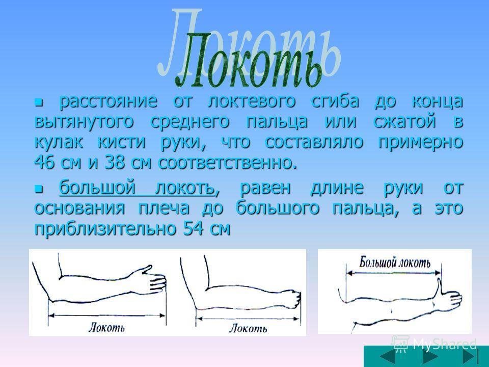 расстояние от локтевого сгиба до конца вытянутого среднего пальца или сжатой в кулак кисти руки, что составляло примерно 46 см и 38 см соответственно. расстояние от локтевого сгиба до конца вытянутого среднего пальца или сжатой в кулак кисти руки, чт
