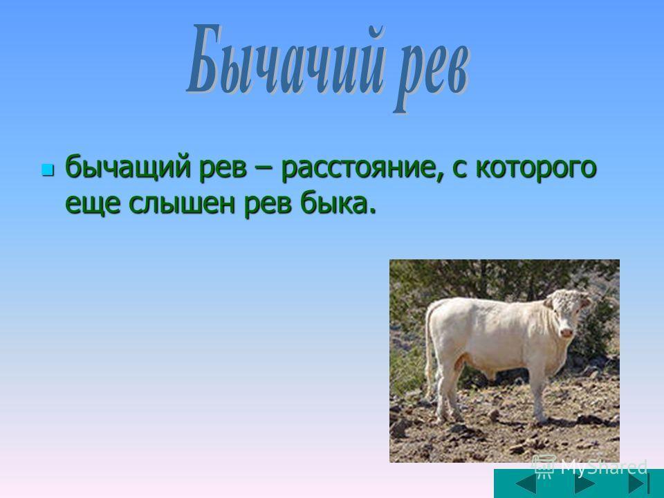 бычащий рев – расстояние, с которого еще слышен рев быка. бычащий рев – расстояние, с которого еще слышен рев быка.