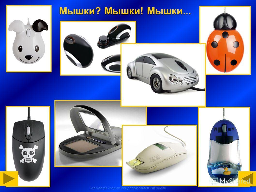 Селковская средняя общеобразовательная школа Мышки? Мышки! Мышки …