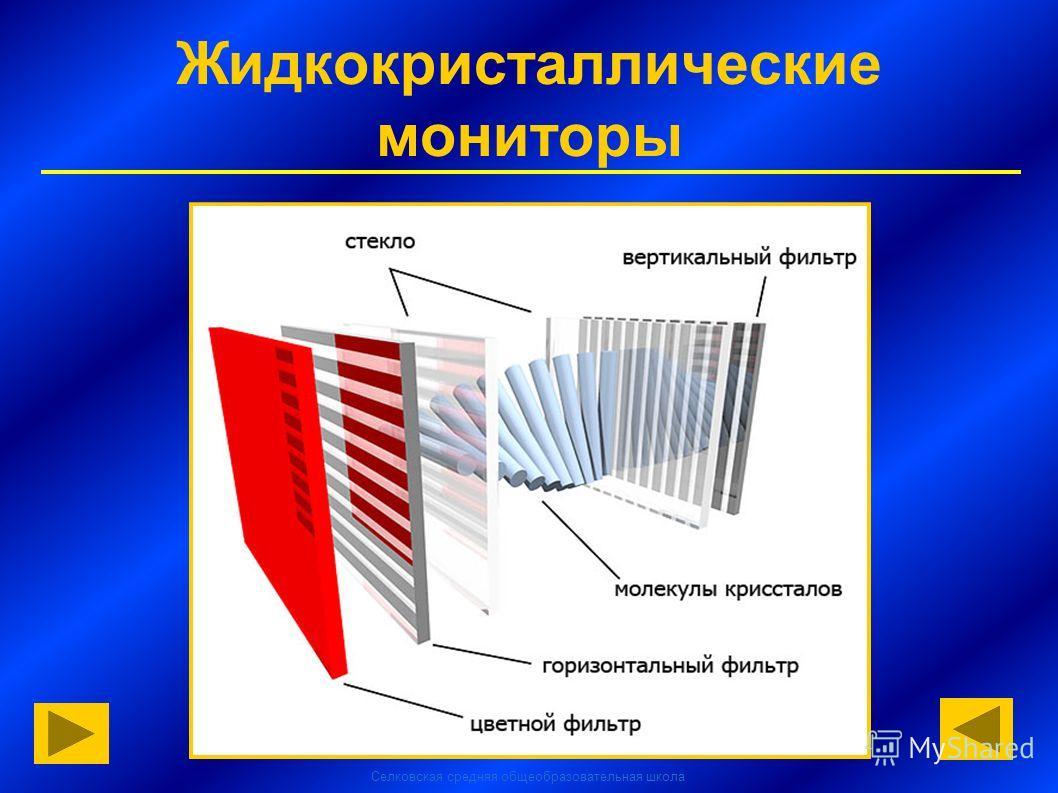 Селковская средняя общеобразовательная школа Жидкокристаллические мониторы