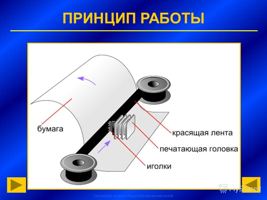 Селковская средняя общеобразовательная школа ПРИНЦИП РАБОТЫ