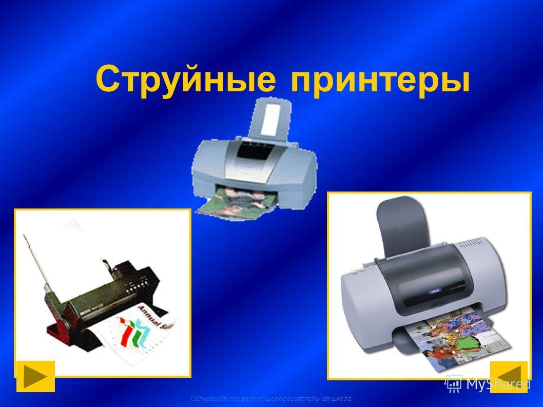 Селковская средняя общеобразовательная школа Струйные принтеры