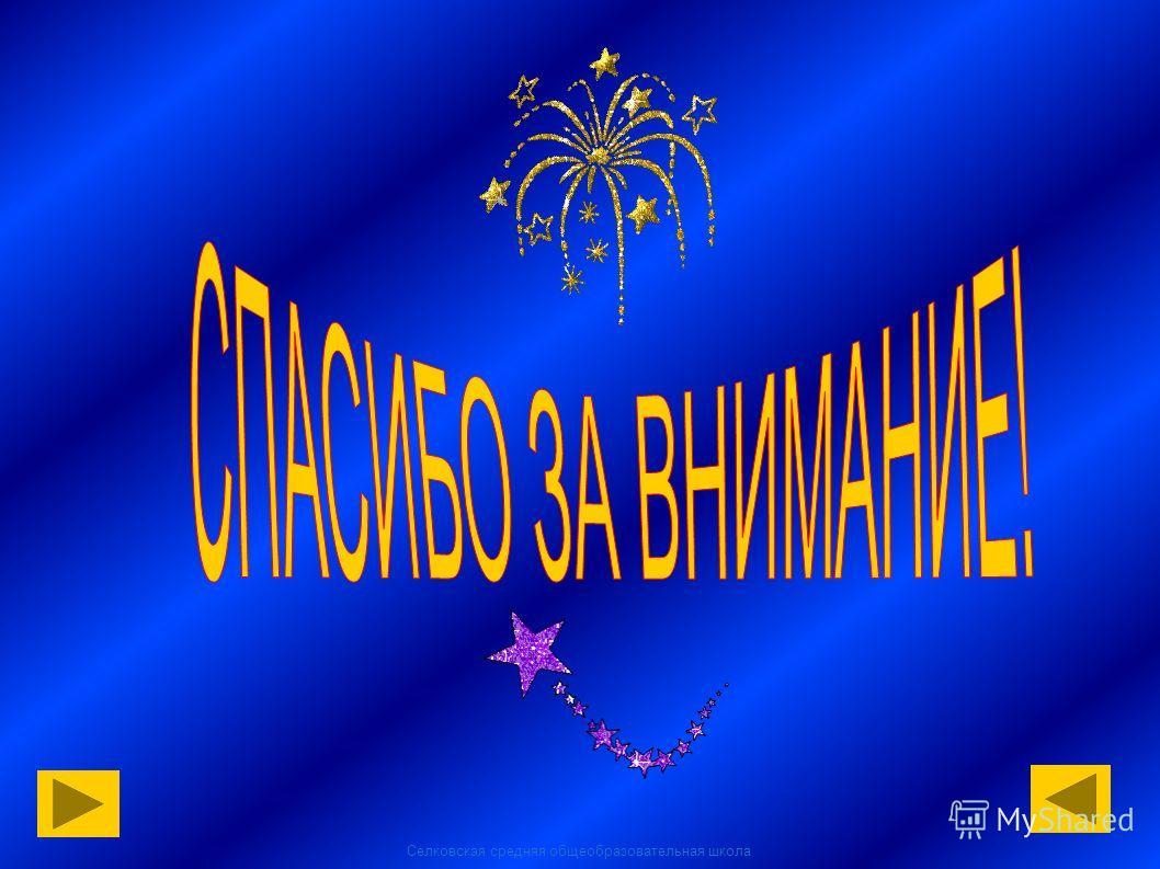 Селковская средняя общеобразовательная школа