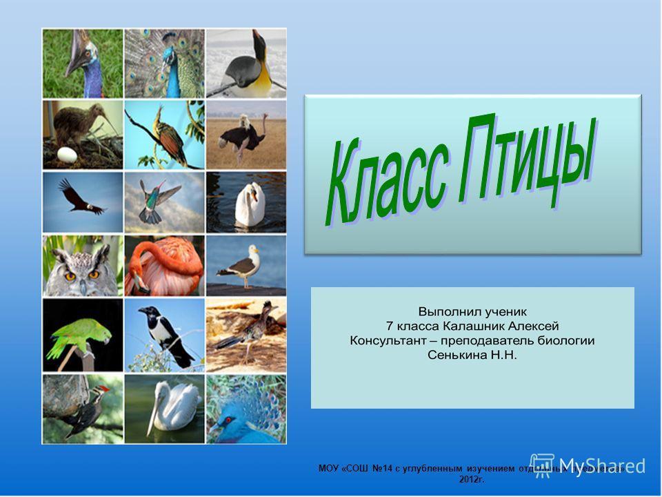 МОУ «СОШ 14 с углубленным изучением отдельных предметов» 2012г.