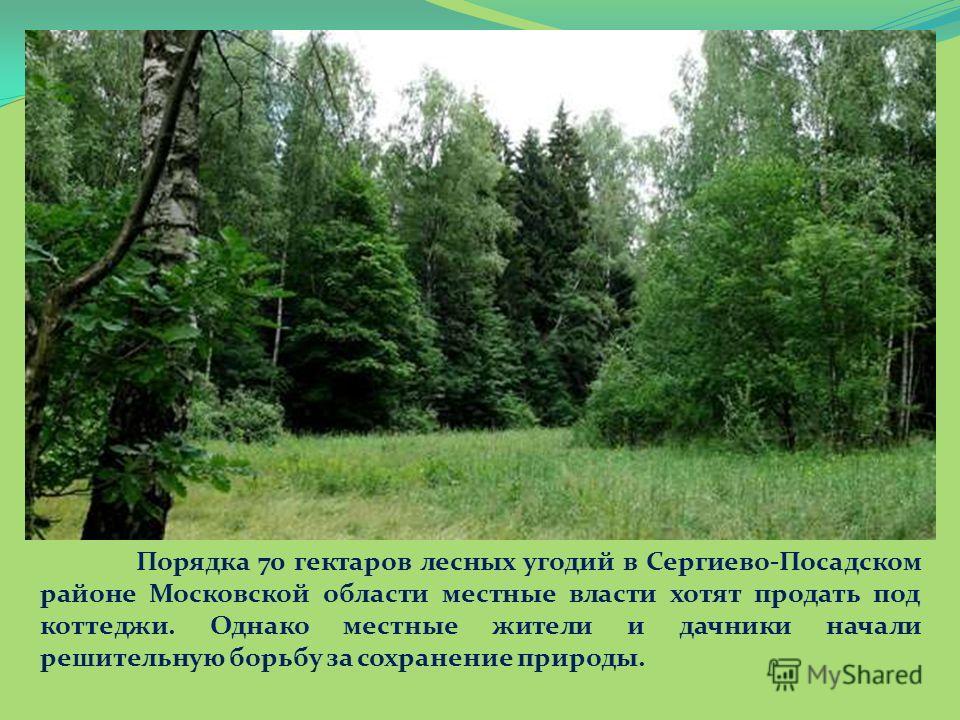 Порядка 70 гектаров лесных угодий в Сергиево-Посадском районе Московской области местные власти хотят продать под коттеджи. Однако местные жители и дачники начали решительную борьбу за сохранение природы.