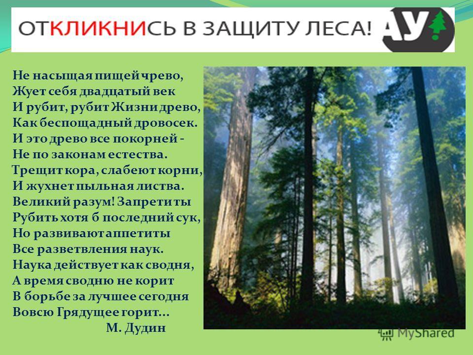 Не насыщая пищей чрево, Жует себя двадцатый век И рубит, рубит Жизни древо, Как беспощадный дровосек. И это древо все покорней - Не по законам естества. Трещит кора, слабеют корни, И жухнет пыльная листва. Великий разум! Запрети ты Рубить хотя б посл