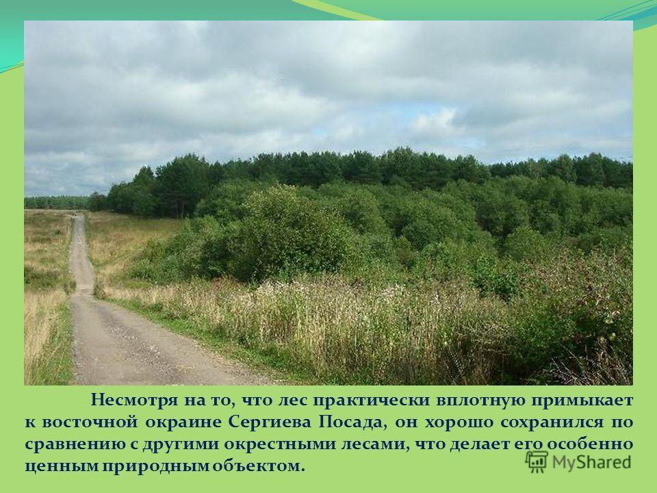 Несмотря на то, что лес практически вплотную примыкает к восточной окраине Сергиева Посада, он хорошо сохранился по сравнению с другими окрестными лесами, что делает его особенно ценным природным объектом.