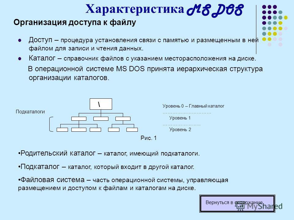 Характеристика MS DOS Организация доступа к файлу Доступ – процедура установления связи с памятью и размещенным в ней файлом для записи и чтения данных. Каталог – справочник файлов с указанием месторасположения на диске. В операционной системе MS DOS