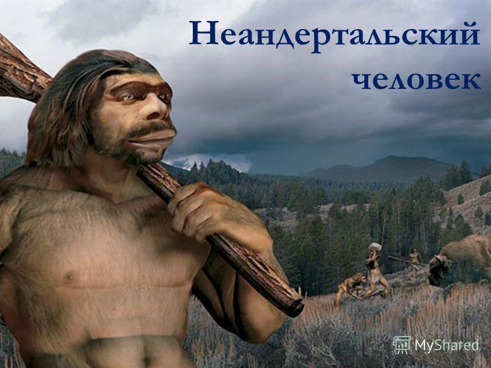 Неандертальский человек