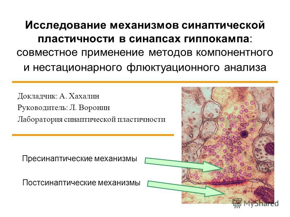 Исследование механизмов синаптической пластичности в синапсах гиппокампа: совместное применение методов компонентного и нестационарного флюктуационного анализа Докладчик: А. Хахалин Руководитель: Л. Воронин Лаборатория синаптической пластичности Прес