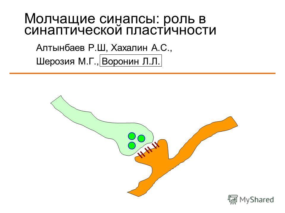 Молчащие синапсы: роль в синаптической пластичности Алтынбаев Р.Ш, Хахалин А.С., Шерозия М.Г., Воронин Л.Л.