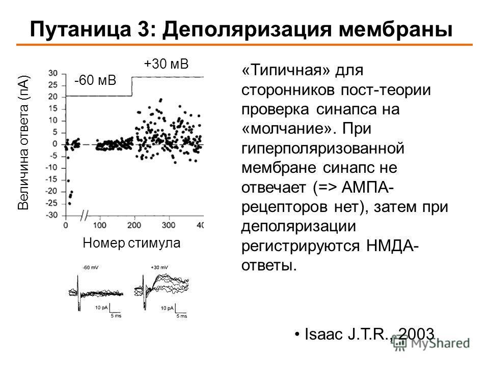 Путаница 3: Деполяризация мембраны Величина ответа (пА) Isaac J.T.R., 2003 Номер стимула -60 мВ +30 мВ «Типичная» для сторонников пост-теории проверка синапса на «молчание». При гиперполяризованной мембране синапс не отвечает (=> АМПА- рецепторов нет