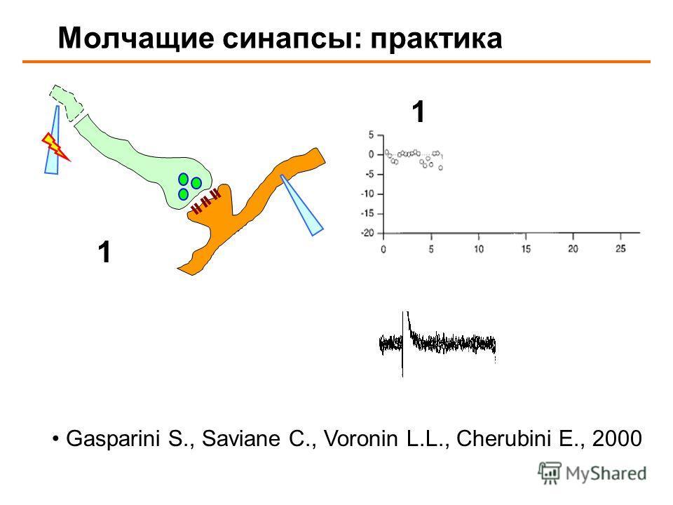 Молчащие синапсы: практика 12 1 Gasparini S., Saviane C., Voronin L.L., Cherubini E., 2000