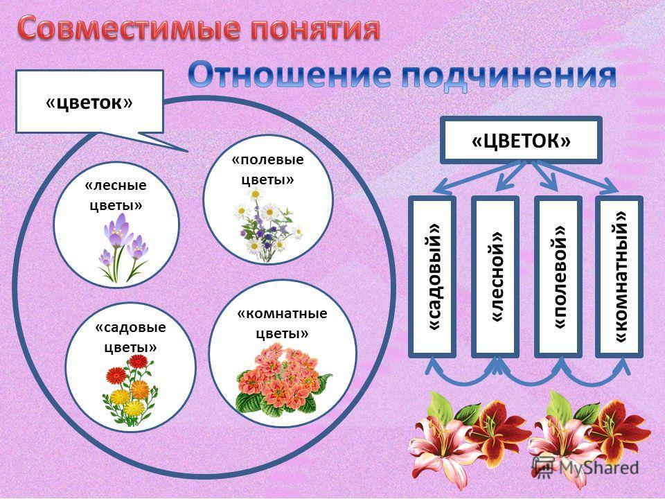 «цветок» «лесные цветы» «полевые цветы» «садовые цветы» «комнатные цветы» «ЦВЕТОК» «садовый» «лесной»«полевой»«комнатный»