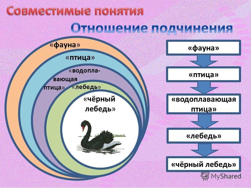 «фауна» «птица» «водопла- вающая птица» «фауна» «лебедь» «чёрный лебедь» «птица» «водоплавающая птица» «лебедь» «чёрный лебедь»