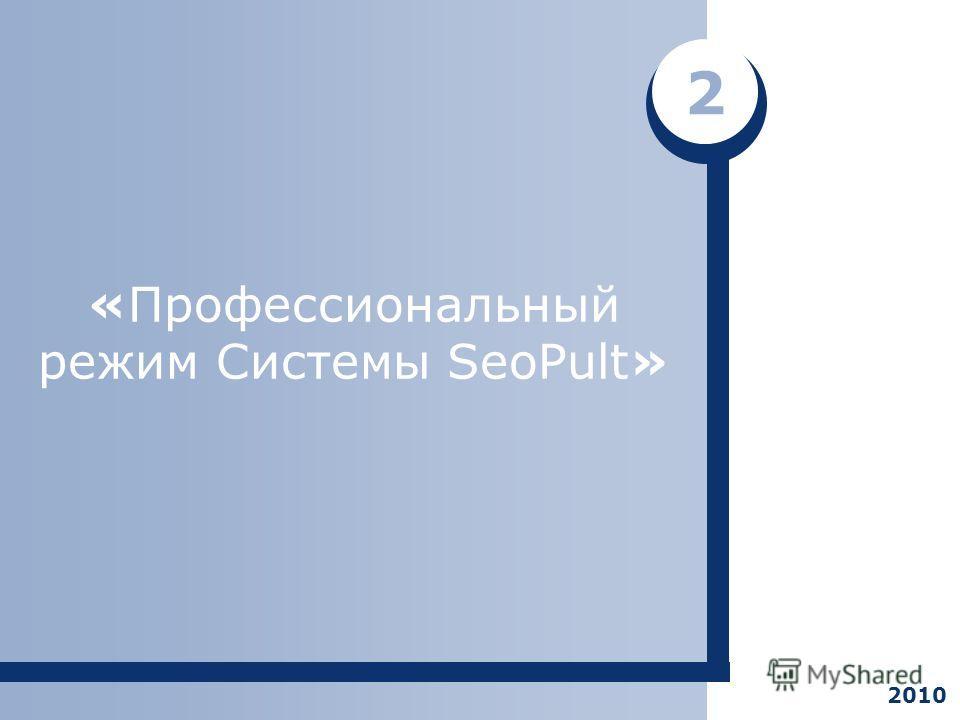 «Профессиональный режим Системы SeoPult» 2 2010