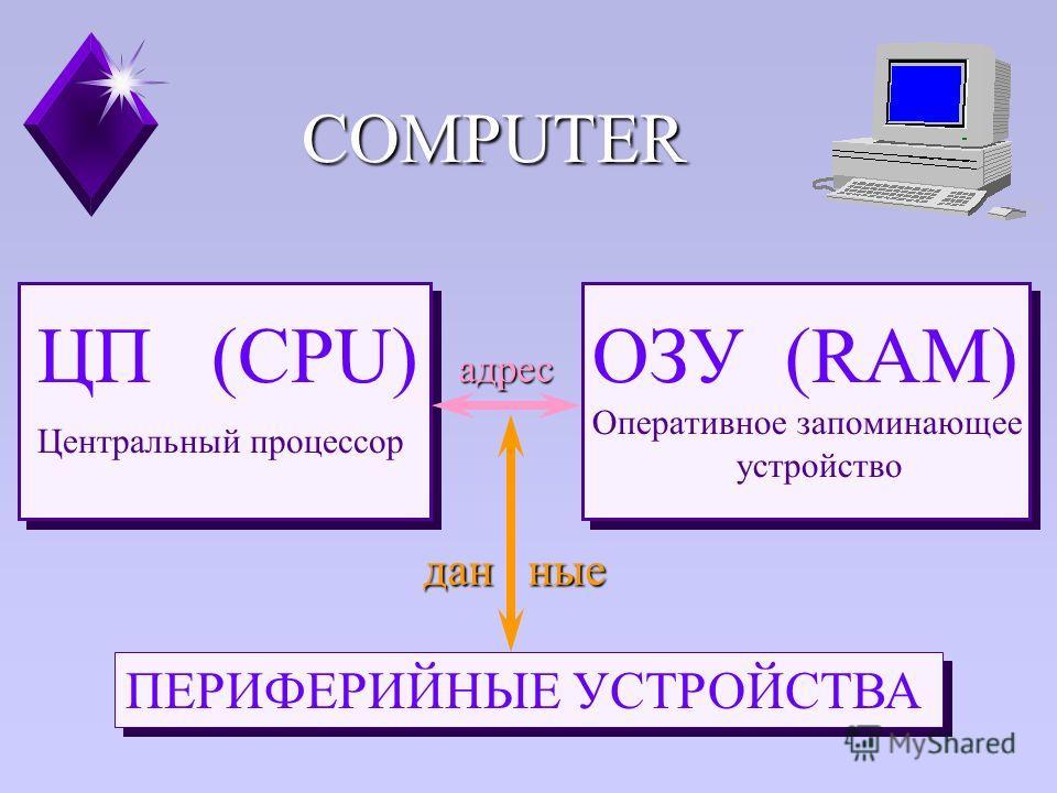 ЦП (CPU) Центральный процессор ОЗУ (RAM) Оперативное запоминающее устройство ПЕРИФЕРИЙНЫЕ УСТРОЙСТВА адрес дан ные COMPUTER