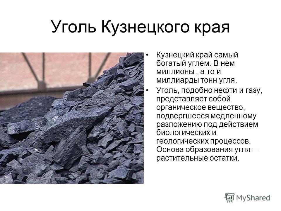 Уголь Кузнецкого края Кузнецкий край самый богатый углём. В нём миллионы, а то и миллиарды тонн угля. Уголь, подобно нефти и газу, представляет собой органическое вещество, подвергшееся медленному разложению под действием биологических и геологически