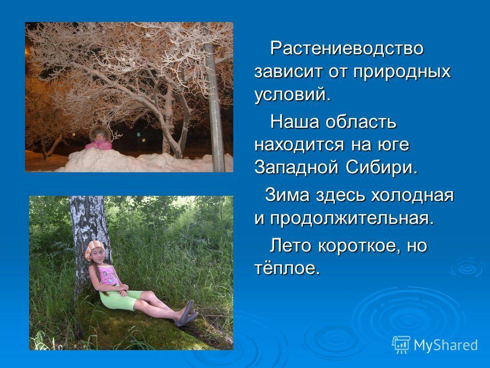 Растениеводство зависит от природных условий. Растениеводство зависит от природных условий. Наша область находится на юге Западной Сибири. Наша область находится на юге Западной Сибири. Зима здесь холодная и продолжительная. Зима здесь холодная и про
