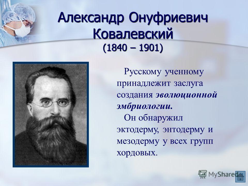 Александр Онуфриевич Ковалевский (1840 – 1901) Русскому ученному принадлежит заслуга создания эволюционной эмбриологии. Он обнаружил эктодерму, энтодерму и мезодерму у всех групп хордовых.