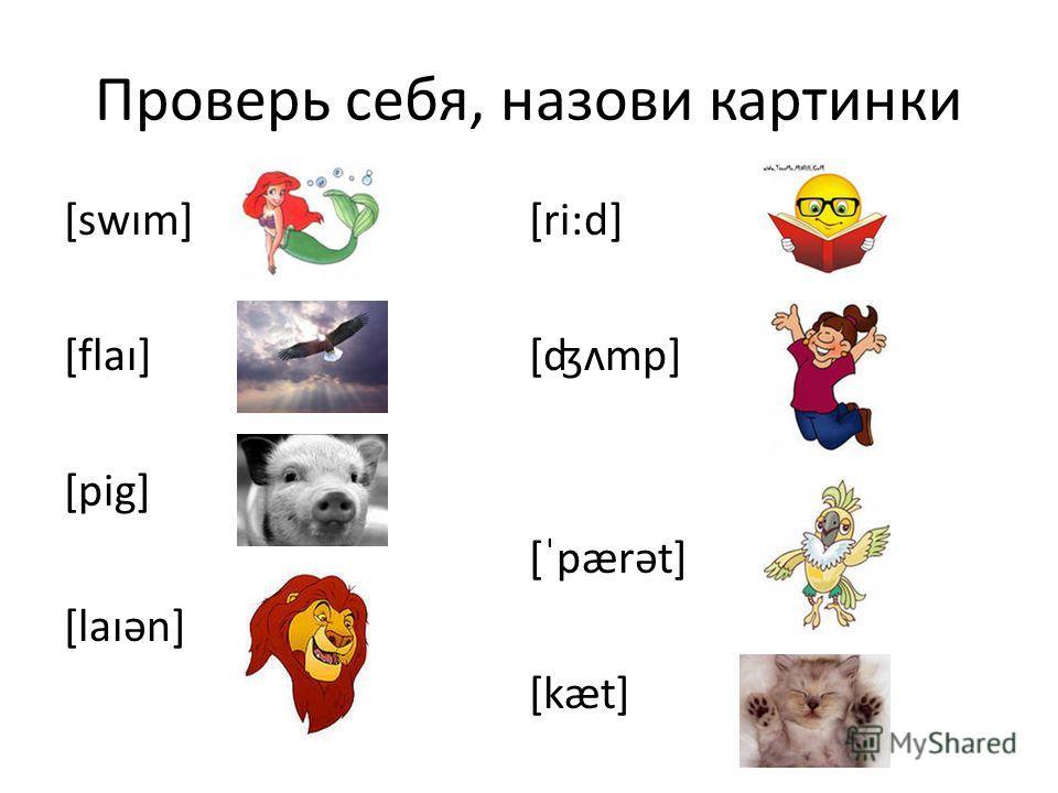 Проверь себя, назови картинки [swım] [flaı] [pig] [laıən] [ri:d] [ʤʌmp] [ˈpærət] [kæt]