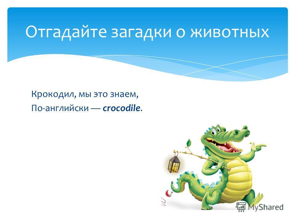 Крокодил, мы это знаем, По-английски сrocodile. Отгадайте загадки о животных