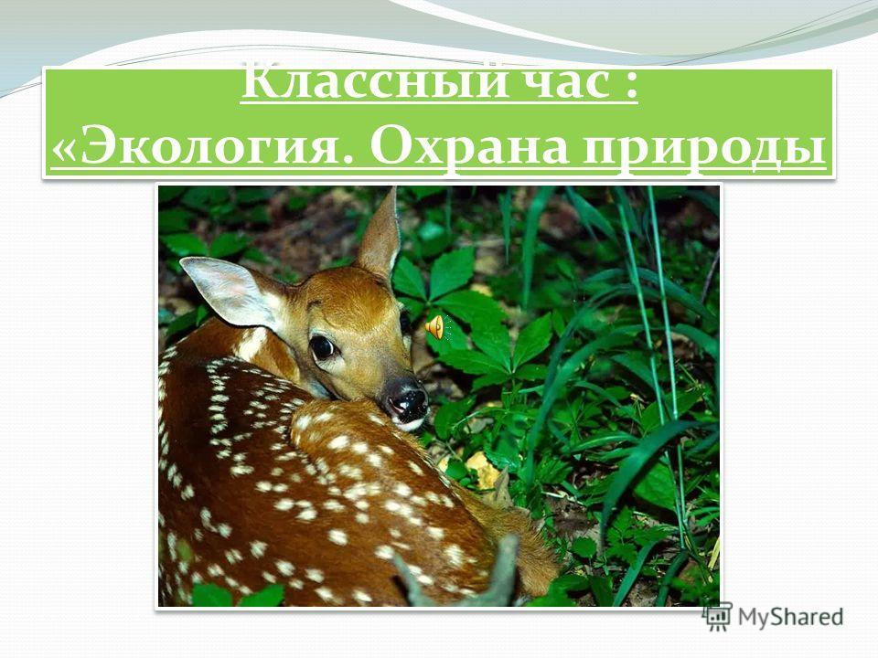 Классный час : «Экология. Охрана природы