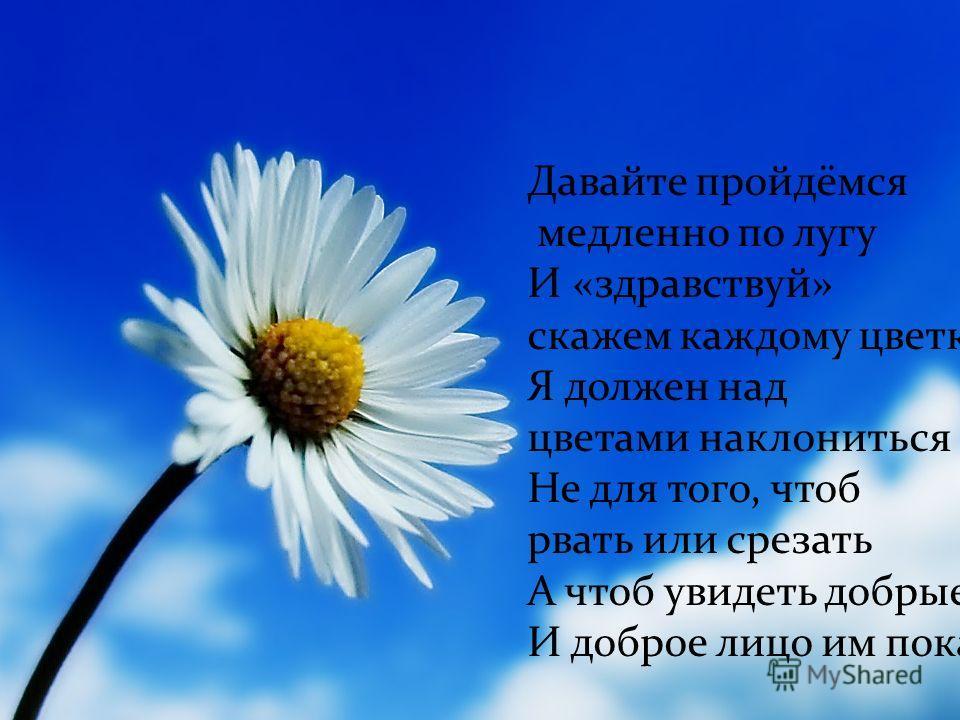 Давайте пройдёмся медленно по лугу И «здравствуй» скажем каждому цветку Я должен над цветами наклониться Не для того, чтоб рвать или срезать А чтоб увидеть добрые их лица И доброе лицо им показать!