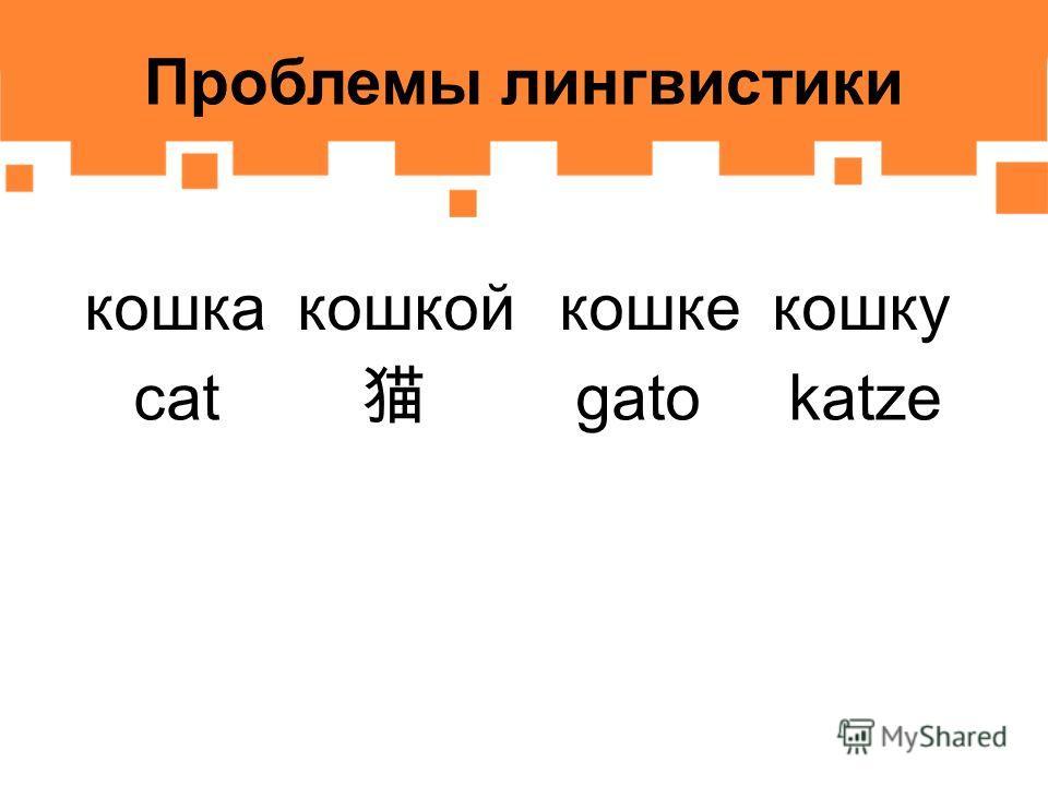 Проблемы лингвистики кошкакошкойкошкекошку cat gatokatze