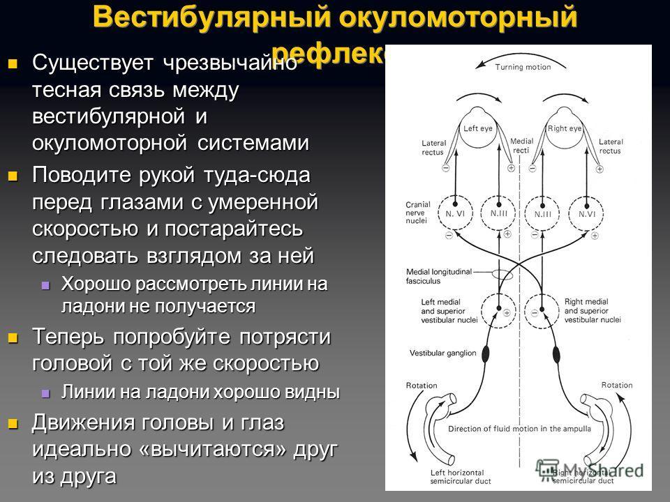 Вестибулярный окуломоторный рефлекс Существует чрезвычайно тесная связь между вестибулярной и окуломоторной системами Существует чрезвычайно тесная связь между вестибулярной и окуломоторной системами Поводите рукой туда-сюда перед глазами с умеренной