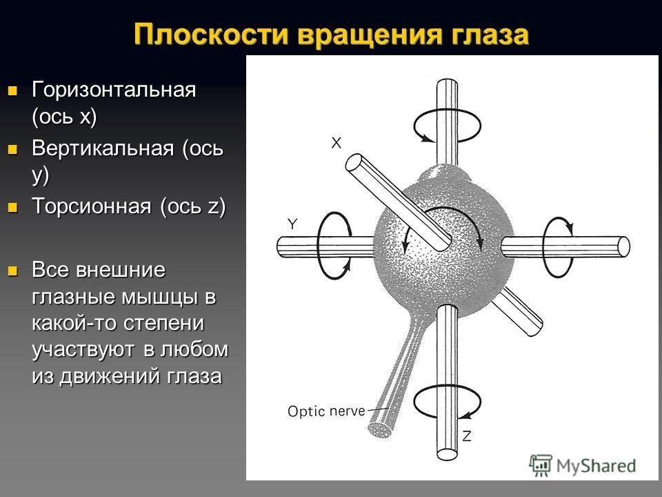 Плоскости вращения глаза Горизонтальная (ось x) Горизонтальная (ось x) Вертикальная (ось y) Вертикальная (ось y) Торсионная (ось z) Торсионная (ось z) Все внешние глазные мышцы в какой-то степени участвуют в любом из движений глаза Все внешние глазны