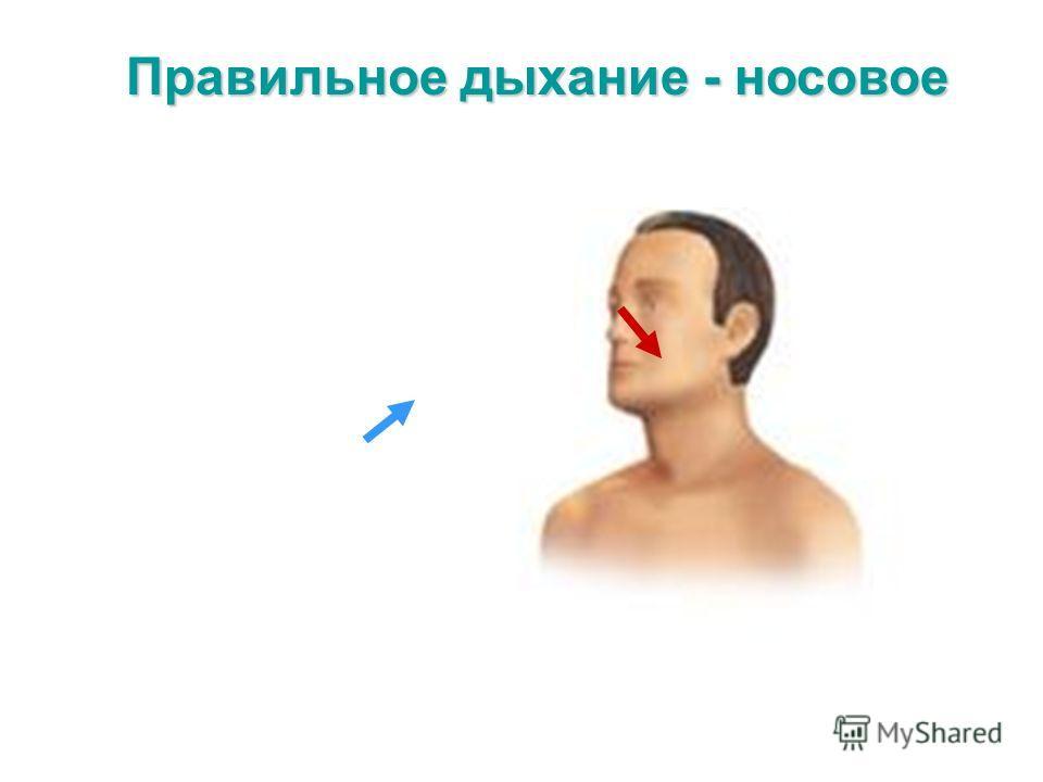 Правильное дыхание - носовое