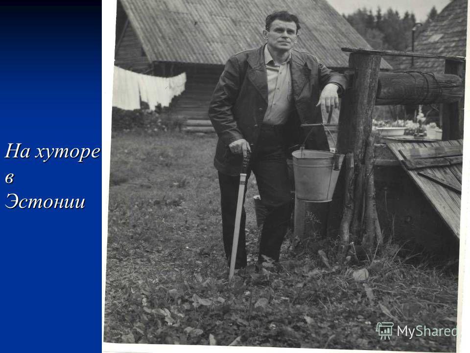 На хуторе вЭстонии