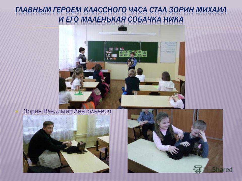 Зорин Владимир Анатольевич