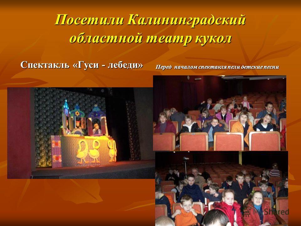Посетили Калининградский областной театр кукол Спектакль «Гуси - лебеди» Перед началом спектакля пели детские песни