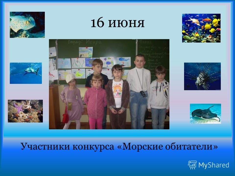 16 июня Участники конкурса «Морские обитатели»