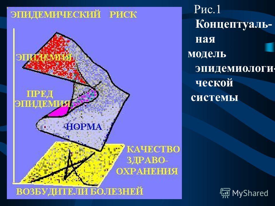 Рис.1 Концептуаль- ная модель эпидемиологи- ческой системы