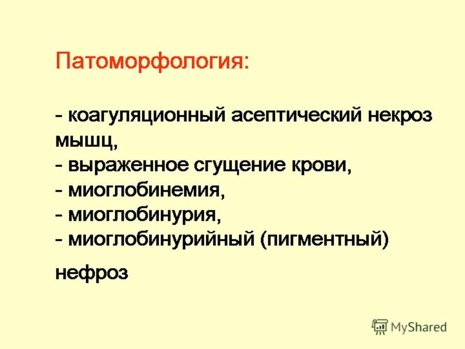 Патоморфология: - коагуляционный асептический некроз мышц, - выраженное сгущение крови, - миоглобинемия, - миоглобинурия, - миоглобинурийный (пигментный) нефроз