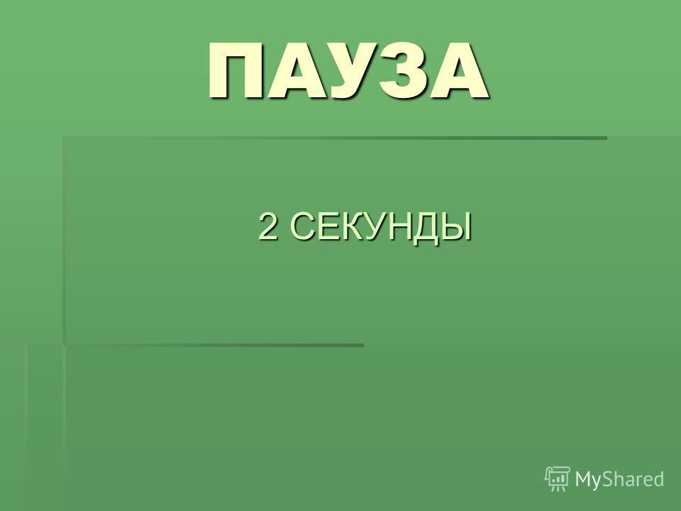 ПАУЗА 2 СЕКУНДЫ