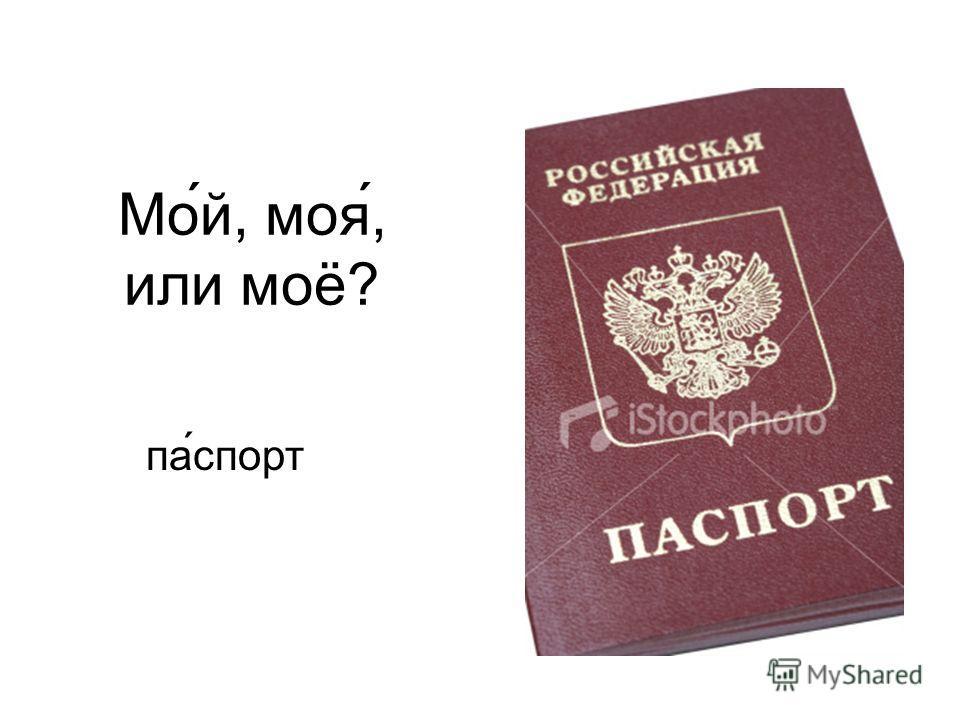Мо́й, моя́, или моё? па ́спорт