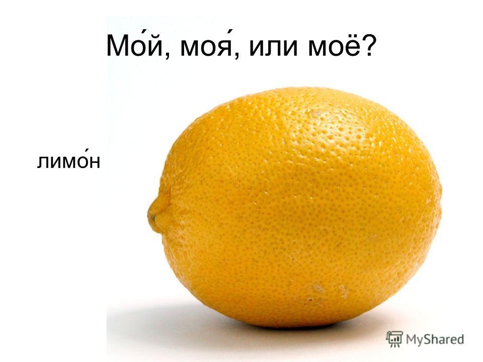 Мо́й, моя́, или моё? ли мо́н