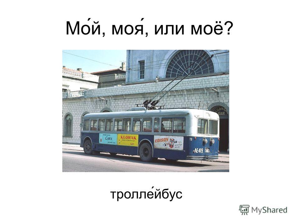 Мо́й, моя́, или моё? троллейбус