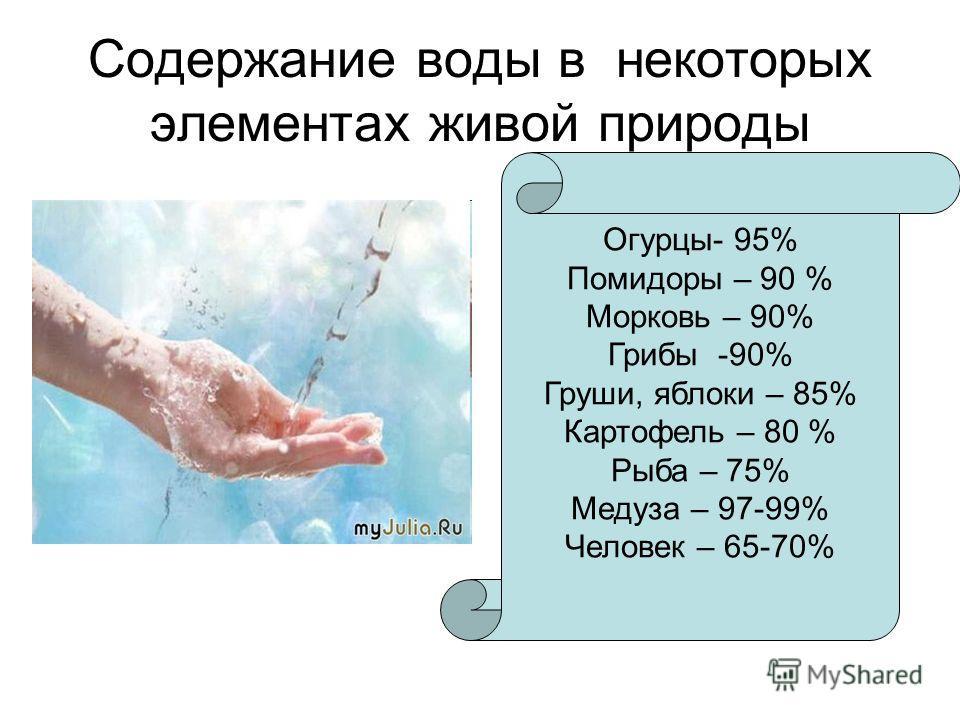 Содержание воды в некоторых элементах живой природы Огурцы- 95% Помидоры – 90 % Морковь – 90% Грибы -90% Груши, яблоки – 85% Картофель – 80 % Рыба – 75% Медуза – 97-99% Человек – 65-70%