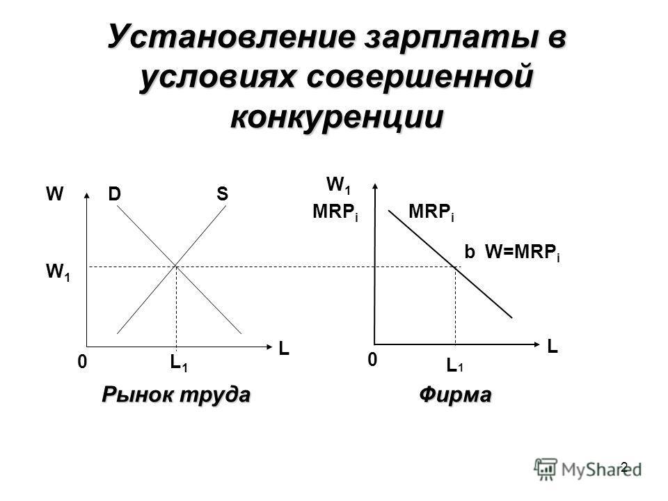 2 Установление зарплаты в условиях совершенной конкуренции DSW L1L1 W1W1 0 L MRP i W1W1 0 L b W=MRP i Рынок труда Фирма L1L1