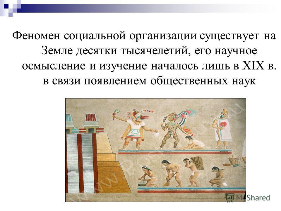 Феномен социальной организации существует на Земле десятки тысячелетий, его научное осмысление и изучение началось лишь в XIX в. в связи появлением общественных наук