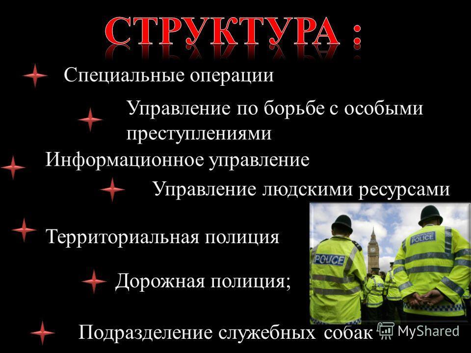 Специальные операции Управление по борьбе с особыми преступлениями Информационное управление Управление людскими ресурсами Территориальная полиция Дорожная полиция; Подразделение служебных собак