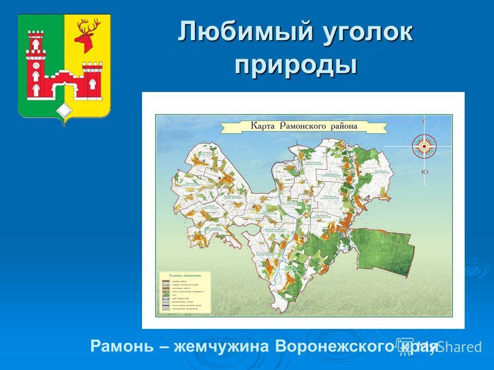 Любимый уголок природы Рамонь – жемчужина Воронежского края