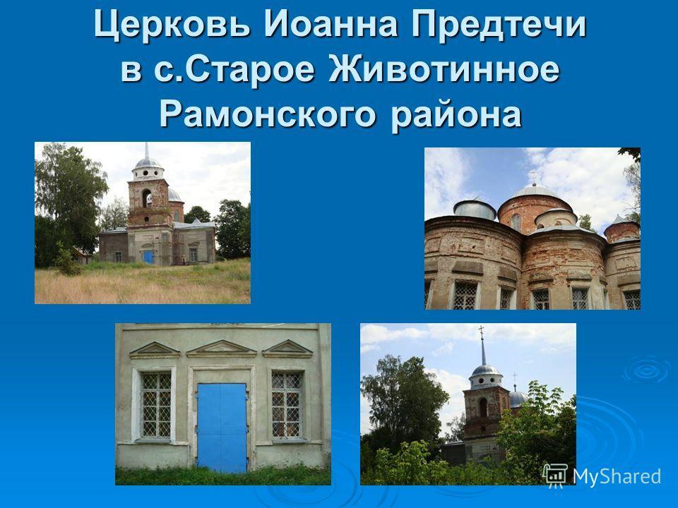 Церковь Иоанна Предтечи в с.Старое Животинное Рамонского района