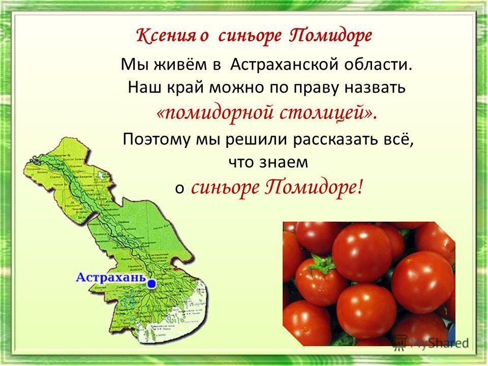 Ксения о синьоре Помидоре Мы живём в Астраханской области. Наш край можно по праву назвать «помидорной столицей». Поэтому мы решили рассказать всё, что знаем о синьоре Помидоре!